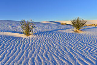 Ripples in pure white sand dunes seem to stretch endlessly in White Sands, New Mexico.