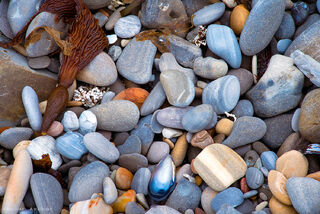 Ocean polished pebbles, found on the rocky cliff beaches of Montana de Oro State Park in central California, have a lengthy story to tell.