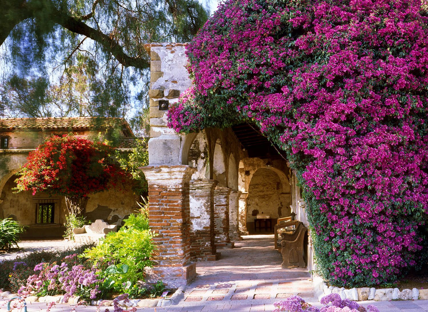 This is the wonderful old Colonnade at the Mission San Juan Capistrano, built in 1796. I returned on several occasions until...